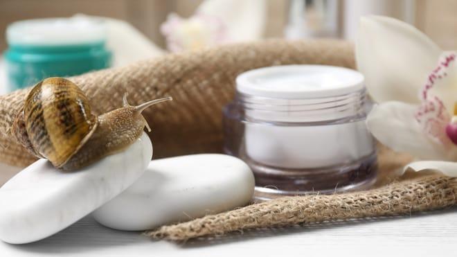Śluz ślimaka w kosmetykach? Wiemy, dlaczego go pokochasz!